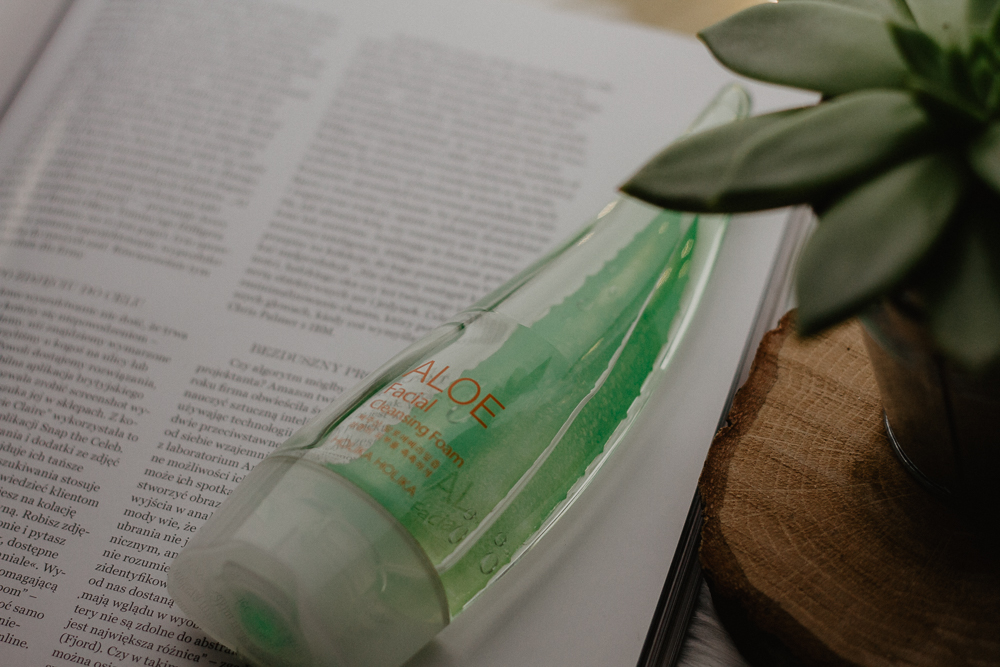 Holika Holika Aloe Facial Cleansing Foam
